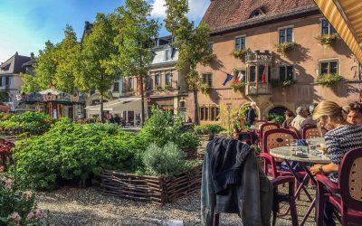 Le vin d'Alsace : l'un des meilleurs vins blanc au monde
